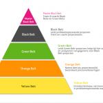 Lean Six Sigma Belts structuur